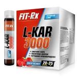 FR L-KAR 3000 20амп