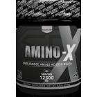 SP AMINO-X