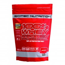 Whey Protein Professional 500гр