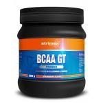 BCAA GT Powder 500гр.
